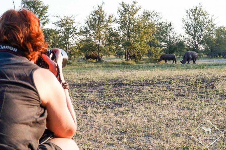 Rhinocéros blancs, parc national Mosi Oa Tunya