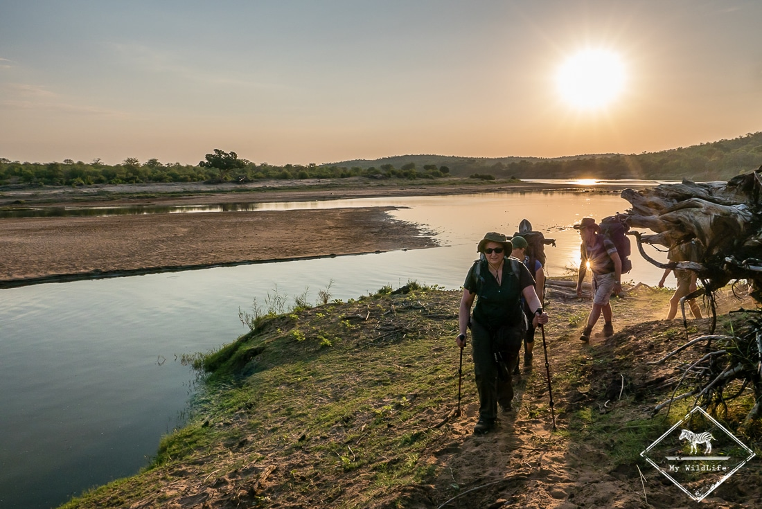 Kruger : Olifants River Backpacking Trail