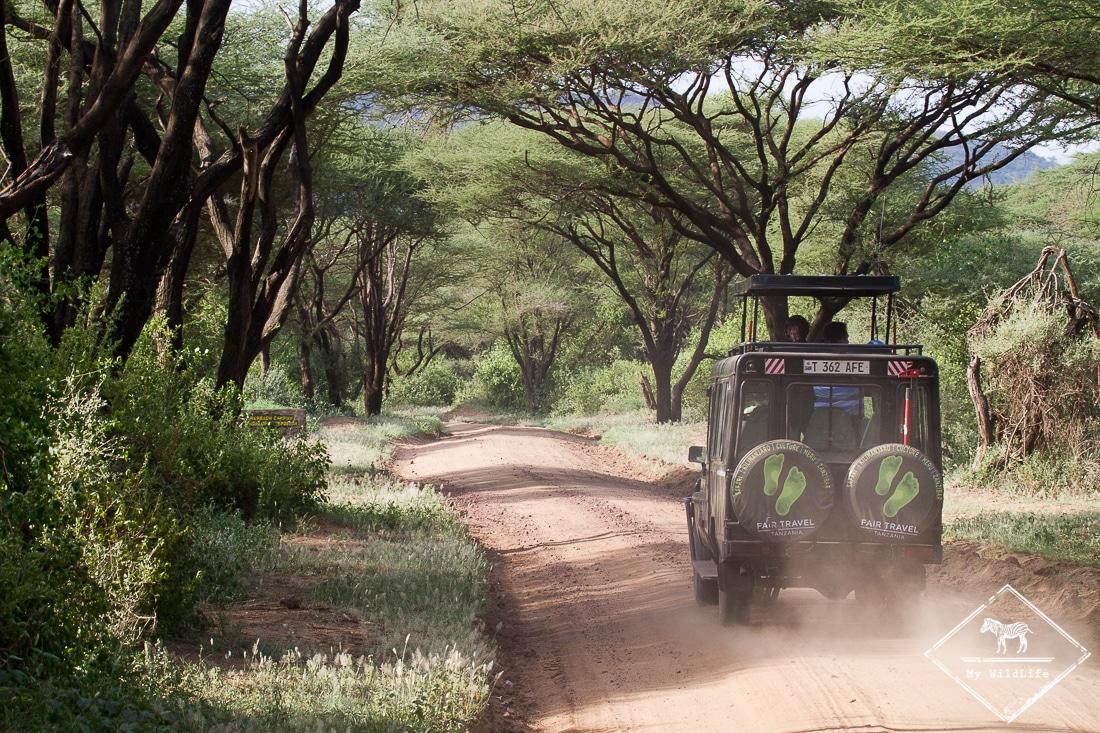 bagages-pour-un-safari-GregoryROHART-2