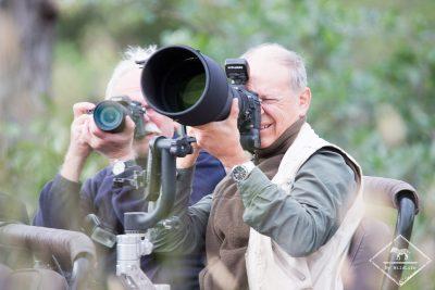 Quel matériel photo pour un safari ?