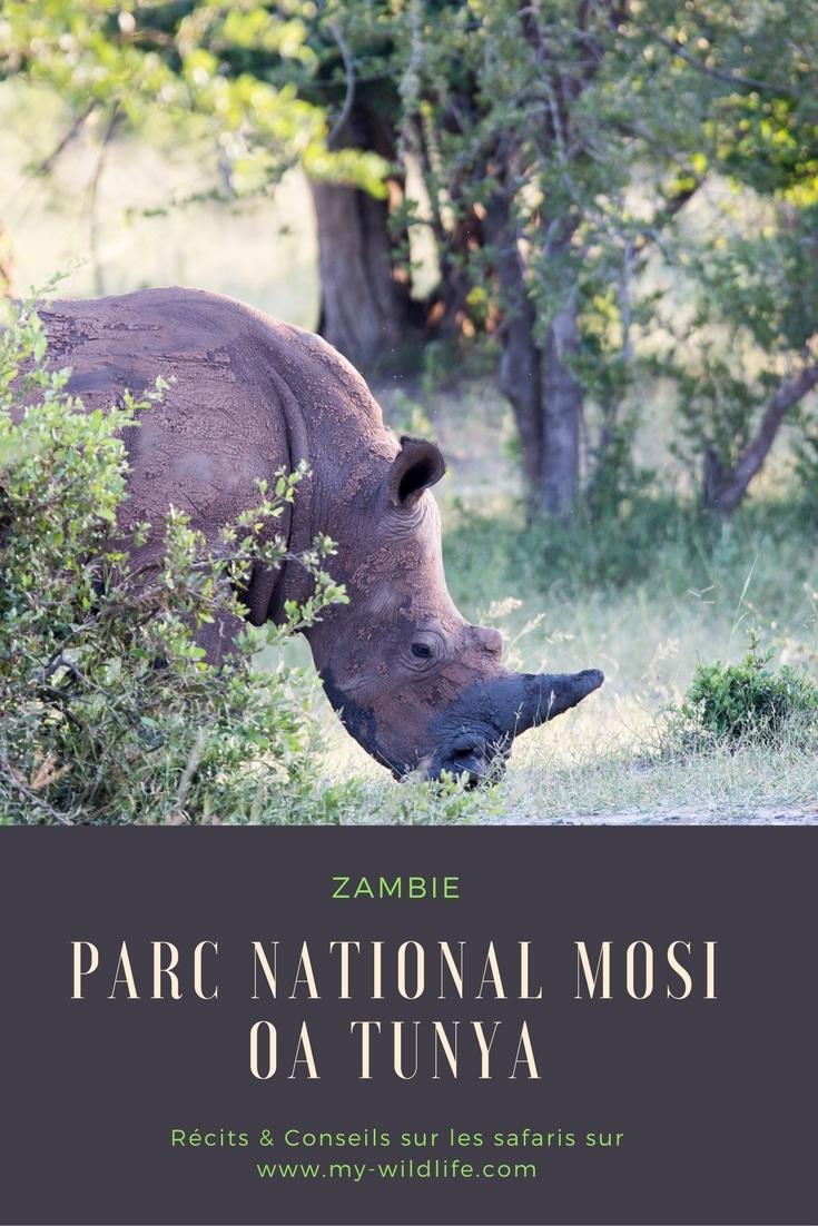 Zambie-Mosi-GregoryROHART-02