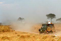 Serengeti : le guide pratique
