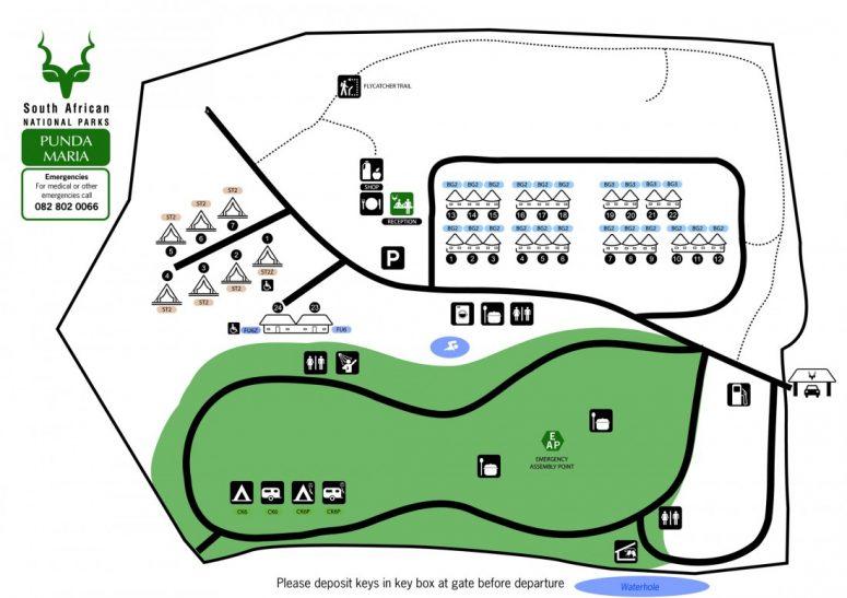 Plan du Punda Maria Restcamp