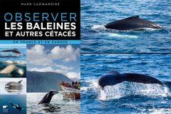 [Livre] Observer les baleines et autres cétacés, en France et en Europe