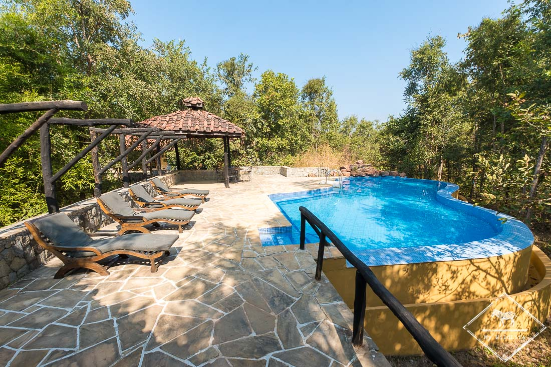 Piscine du Kanha Earth Lodge