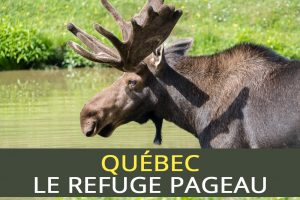 Refuge Pageau