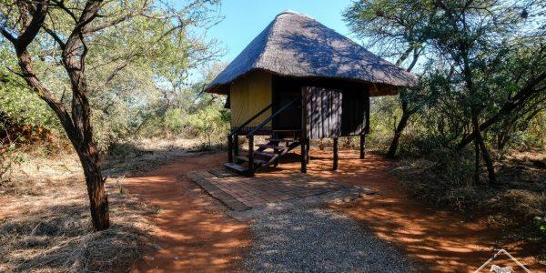 madikwe-gregoryrohart-6528-2