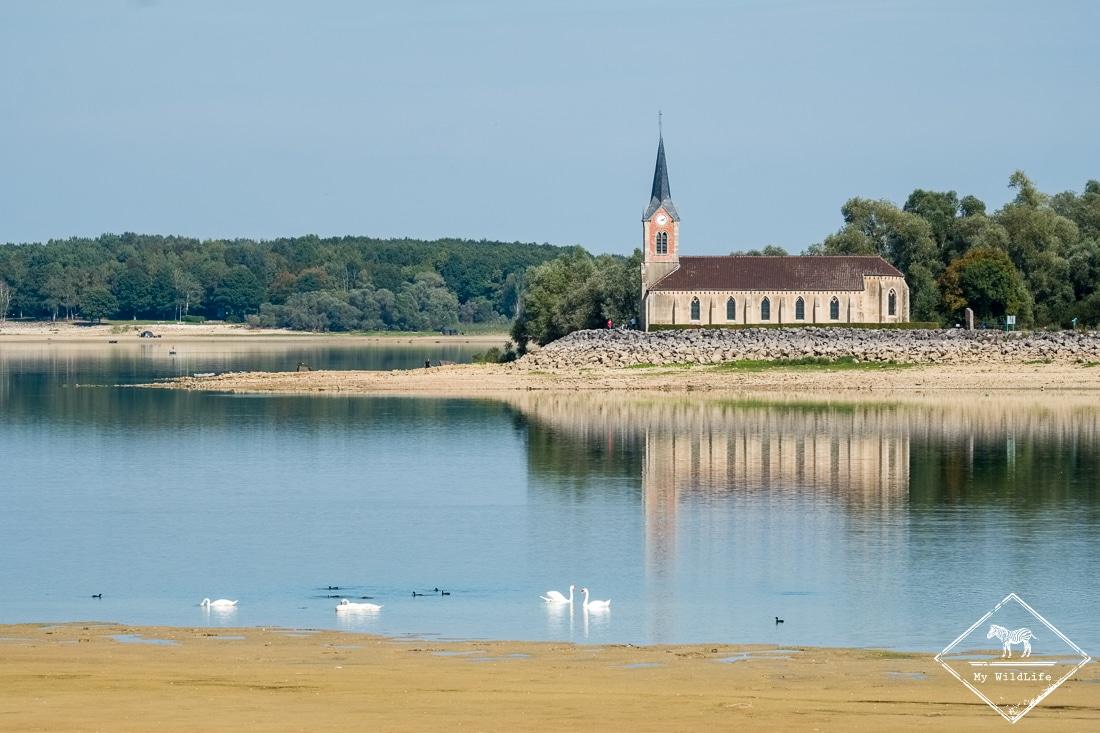 Eglise de Montaubert