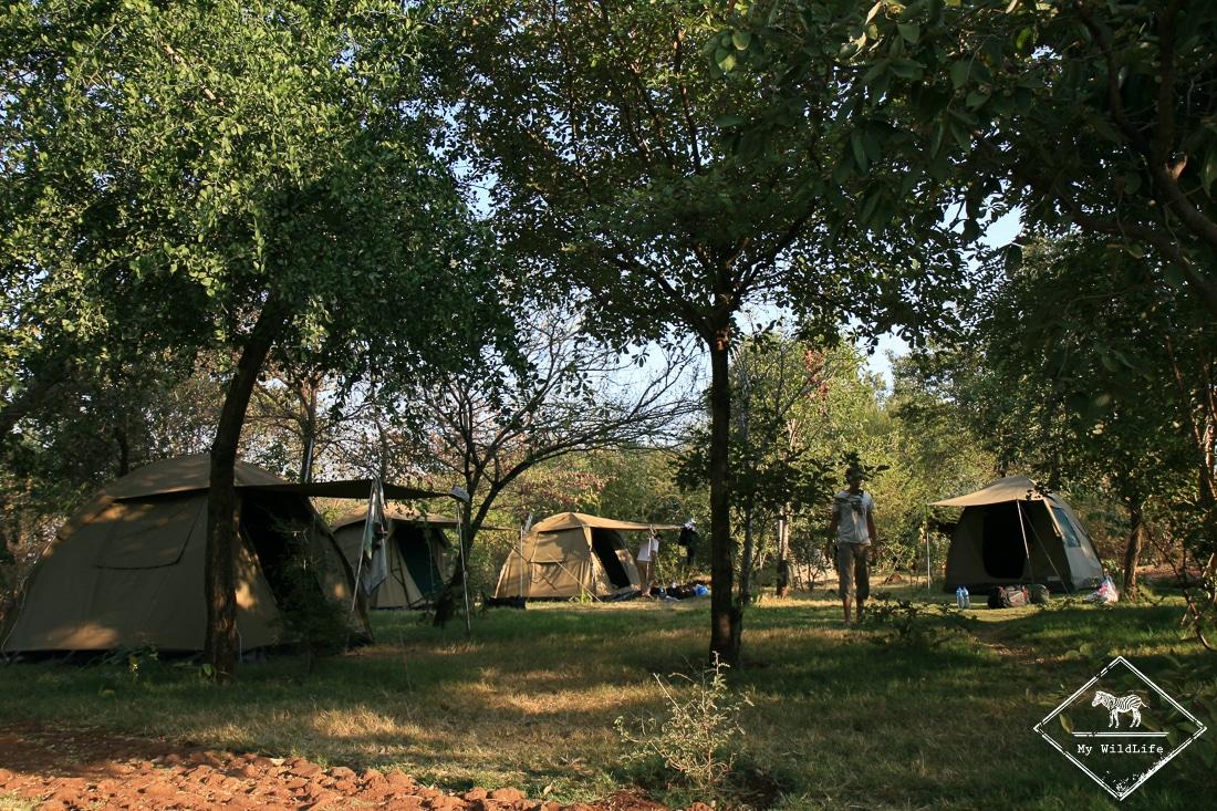 Camping Parc national du lac Manyara