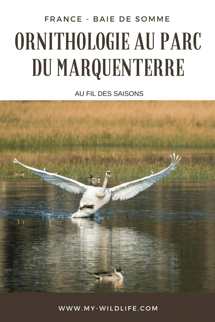 Marquenterre-02