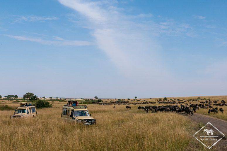 Safari Masaï Mara