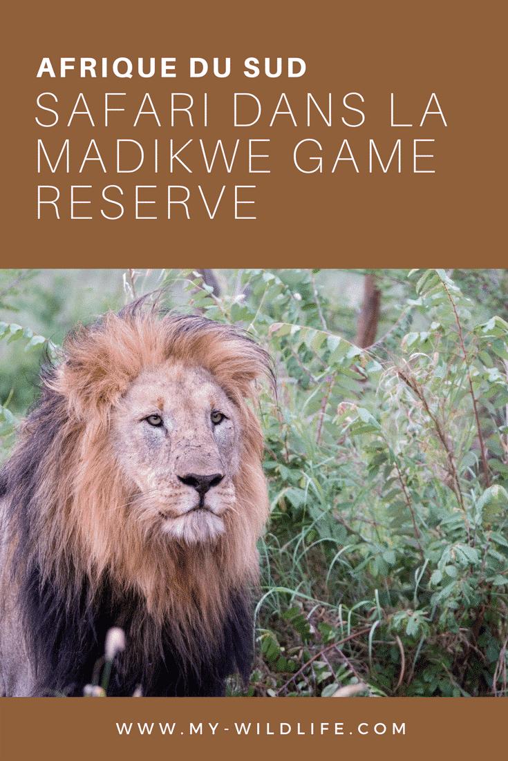 Madikwe-02