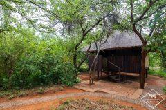 J'ai testé le Mosetlha Bush Camp & Eco Lodge dans la Madikwe Game Reserve