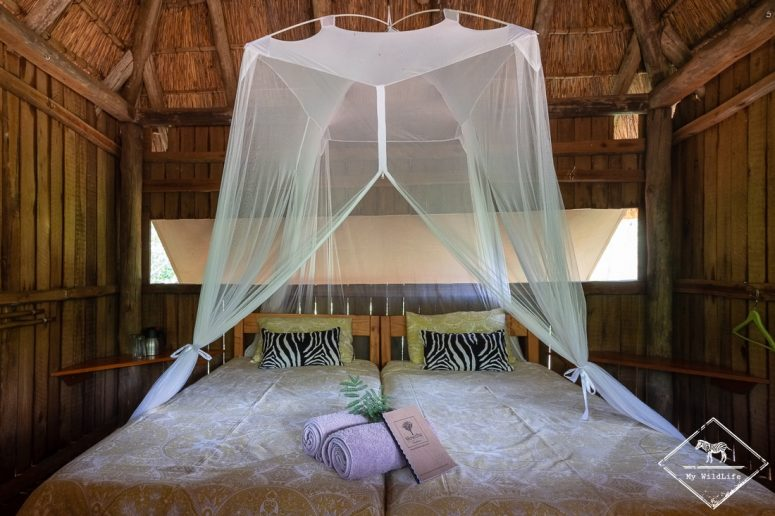 Mosetlha Bush Camp & Eco Lodge, Madikwe Game Reserve.