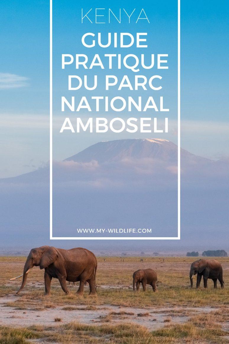 Guide Pratique du parc national Amboseli