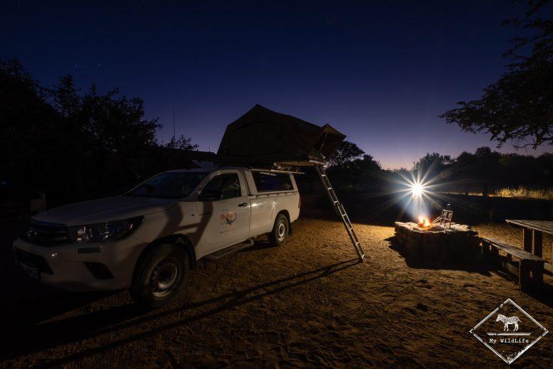 Safari Roadtrip dans le Kalahari sud-africain