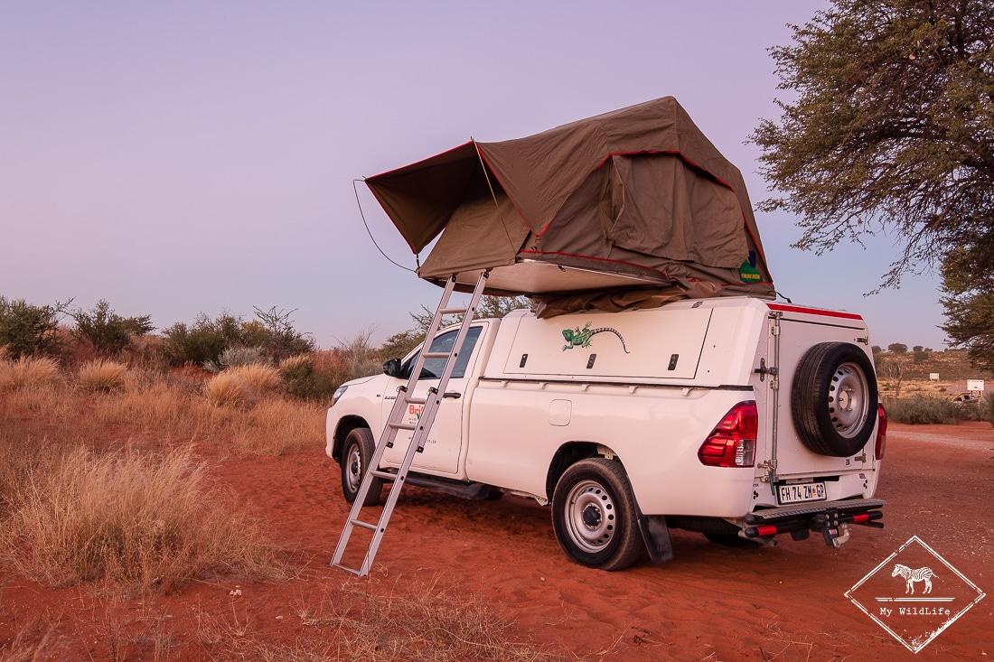 Roadtrip dans le Kalahari en Afrique du Sud