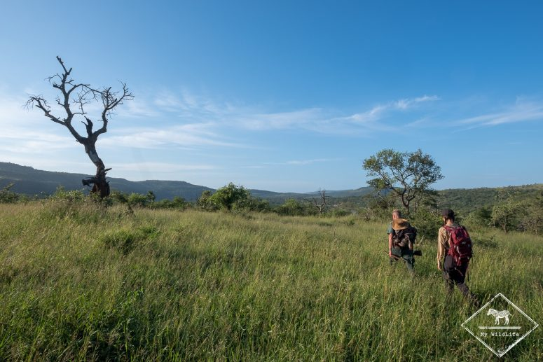 iMfolozi Wilderness Trails