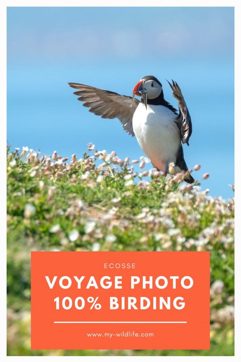 Voyage Photo Ecosse