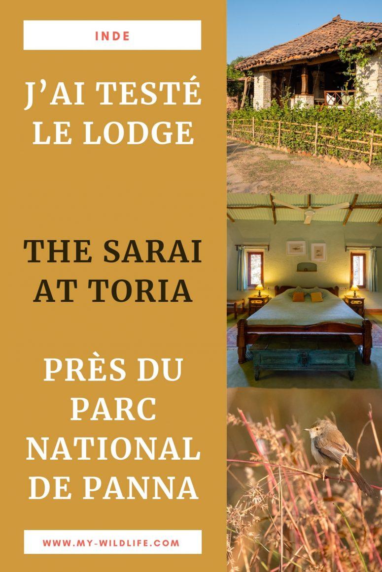 The Sarai at Toria