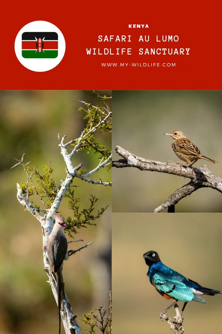 Lumo Wildlife Sanctuary