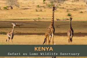 Lumo Wildlife Sanctuary