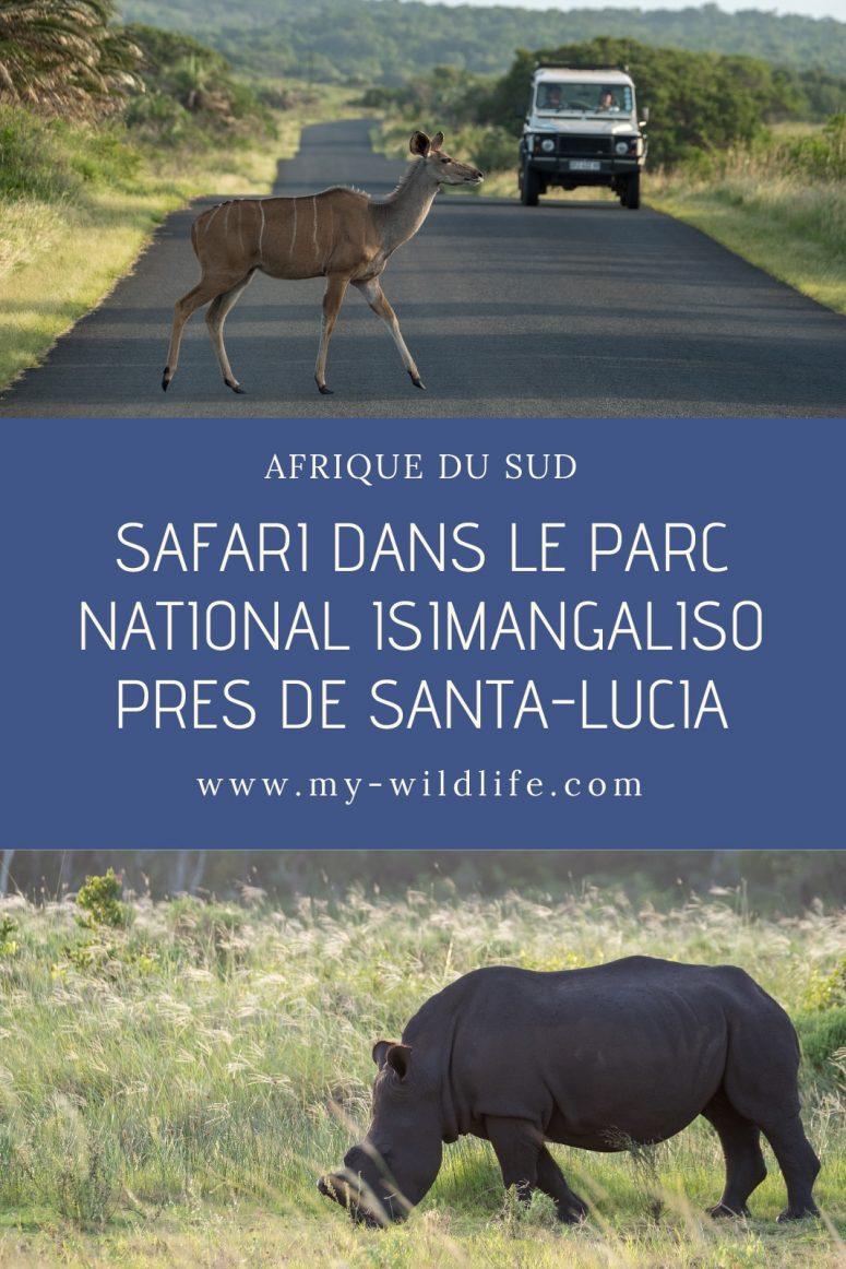 Safari dans le parc national iSimangaliso