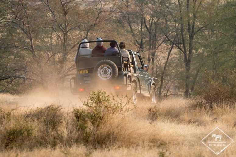parc national de Ranthambore