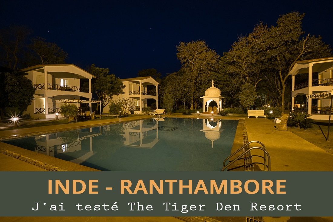 The Tiger Den Resort
