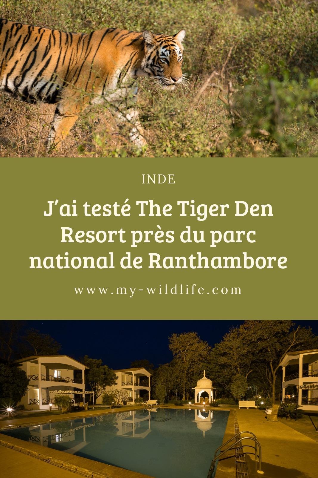 tigerdenresort-01