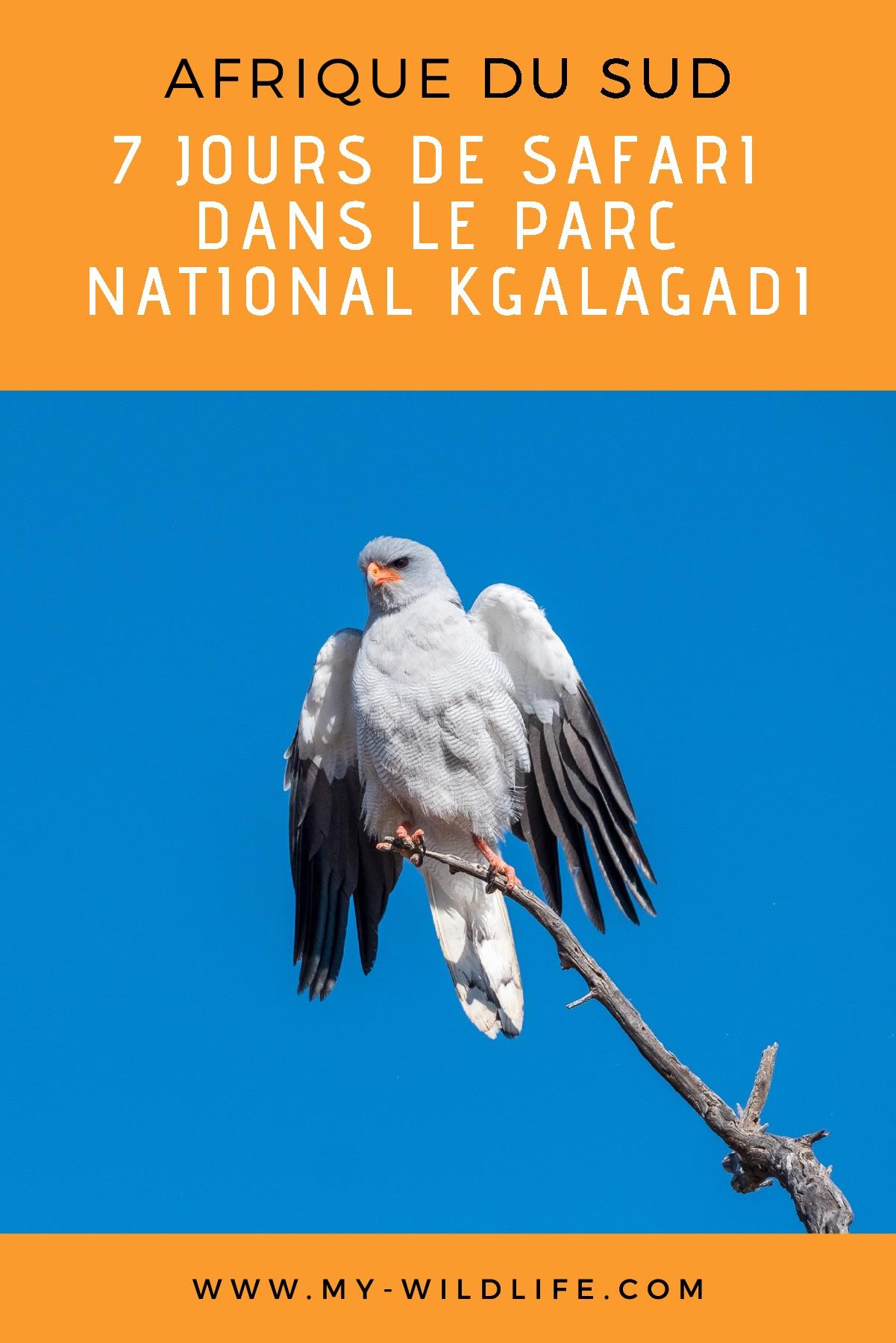 Kgalagadi-04