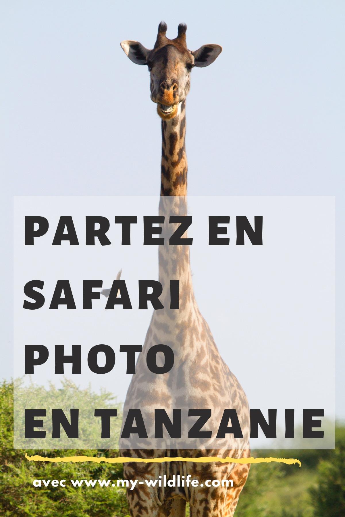 Pinterest-safari-tanzanie-03