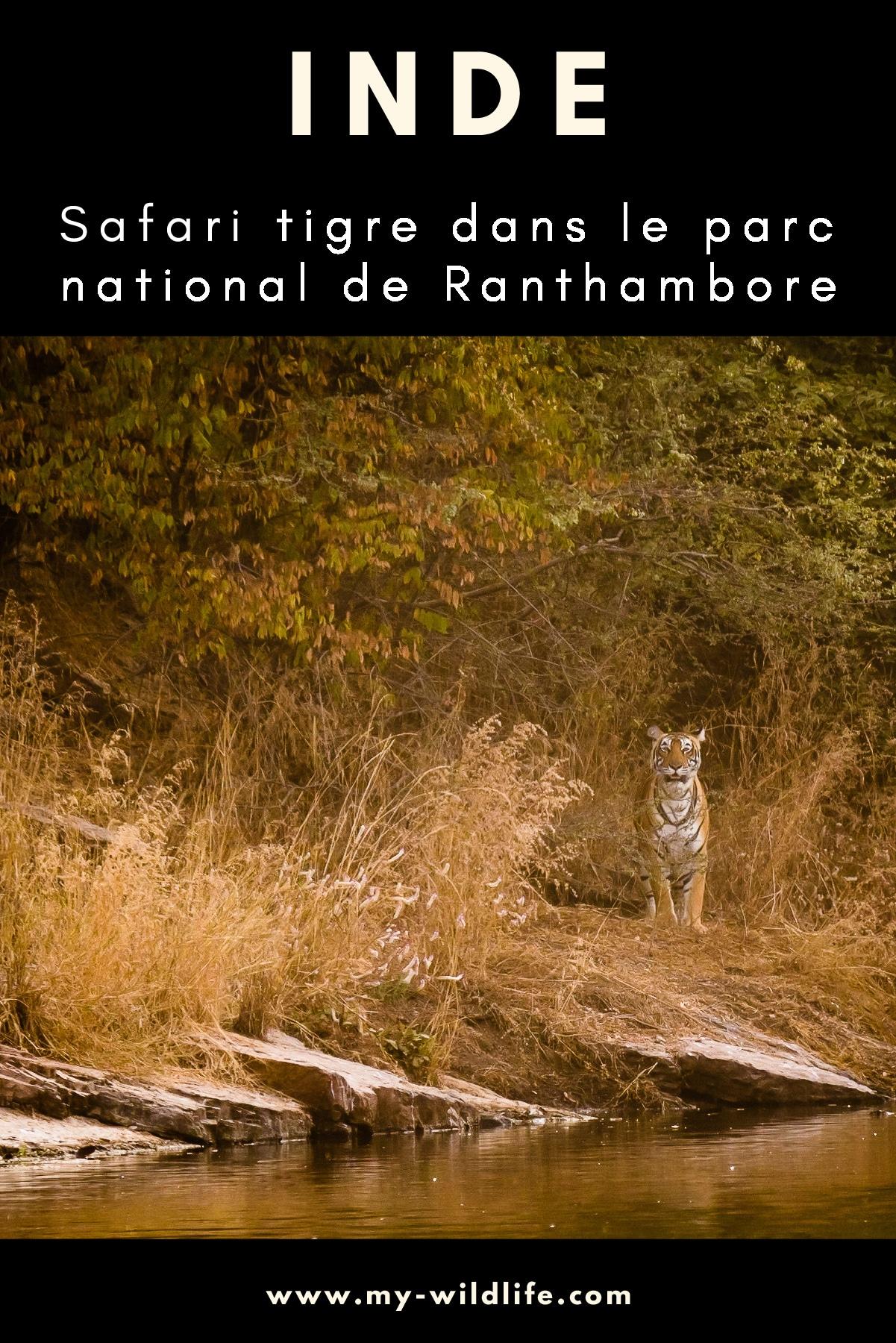 Ranthambore-02