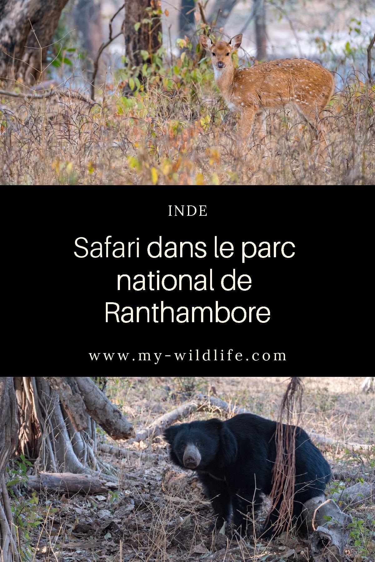 Ranthambore-03