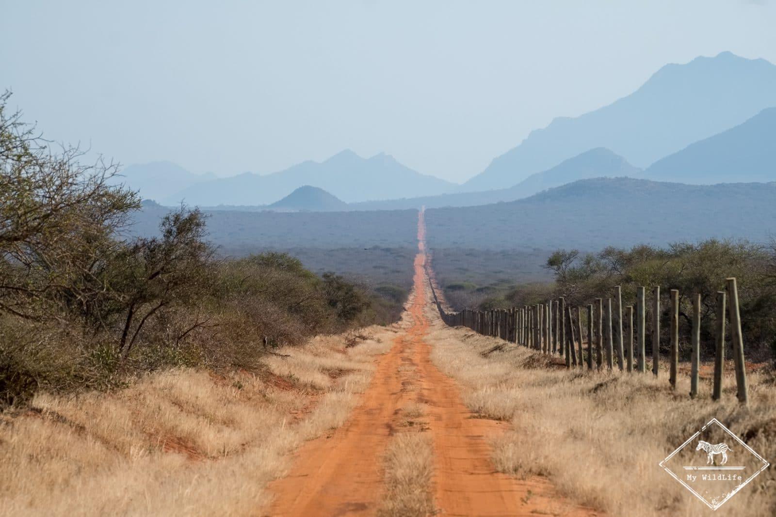 Safari à Tsavo Ouest