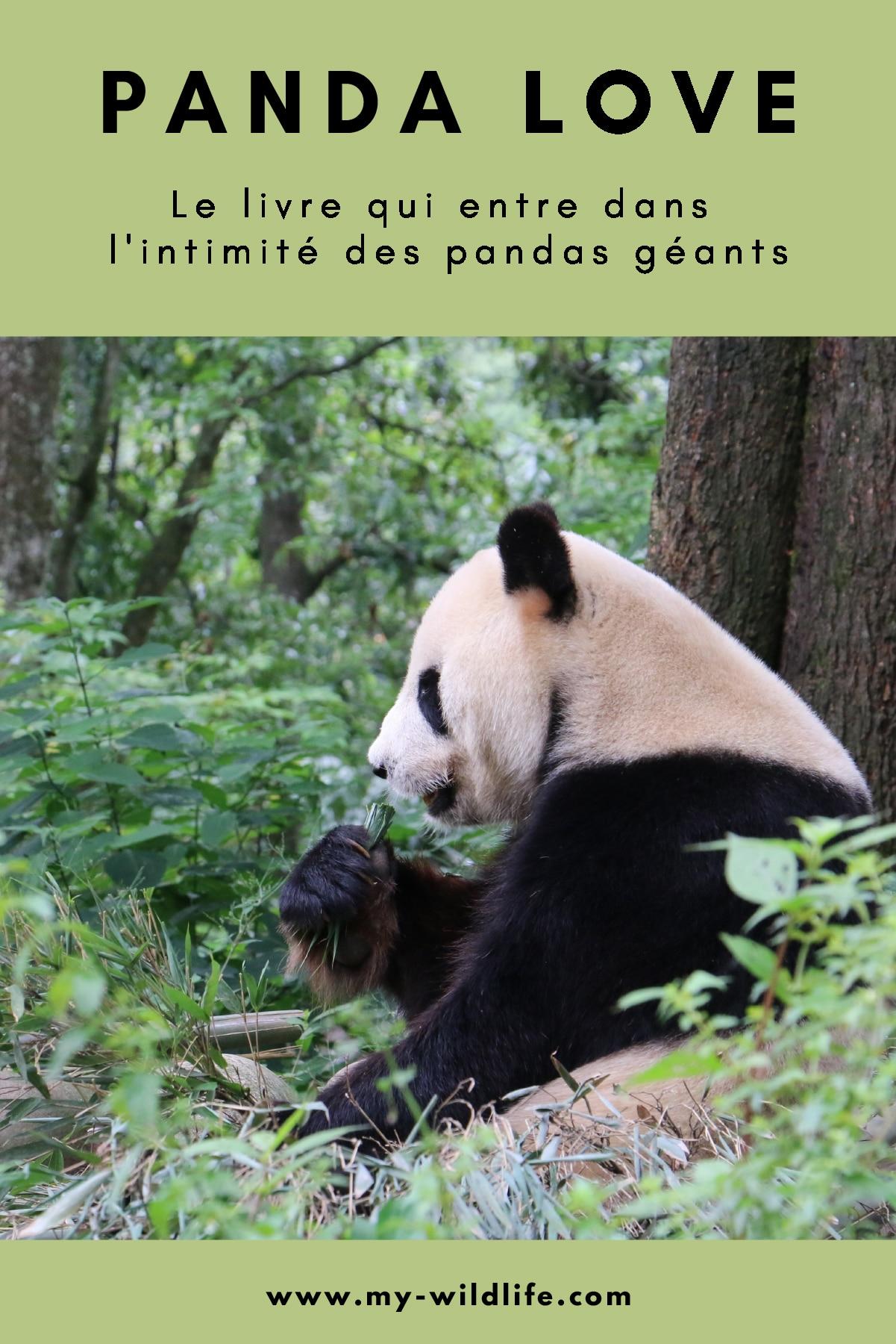 PandaLove-pinterest
