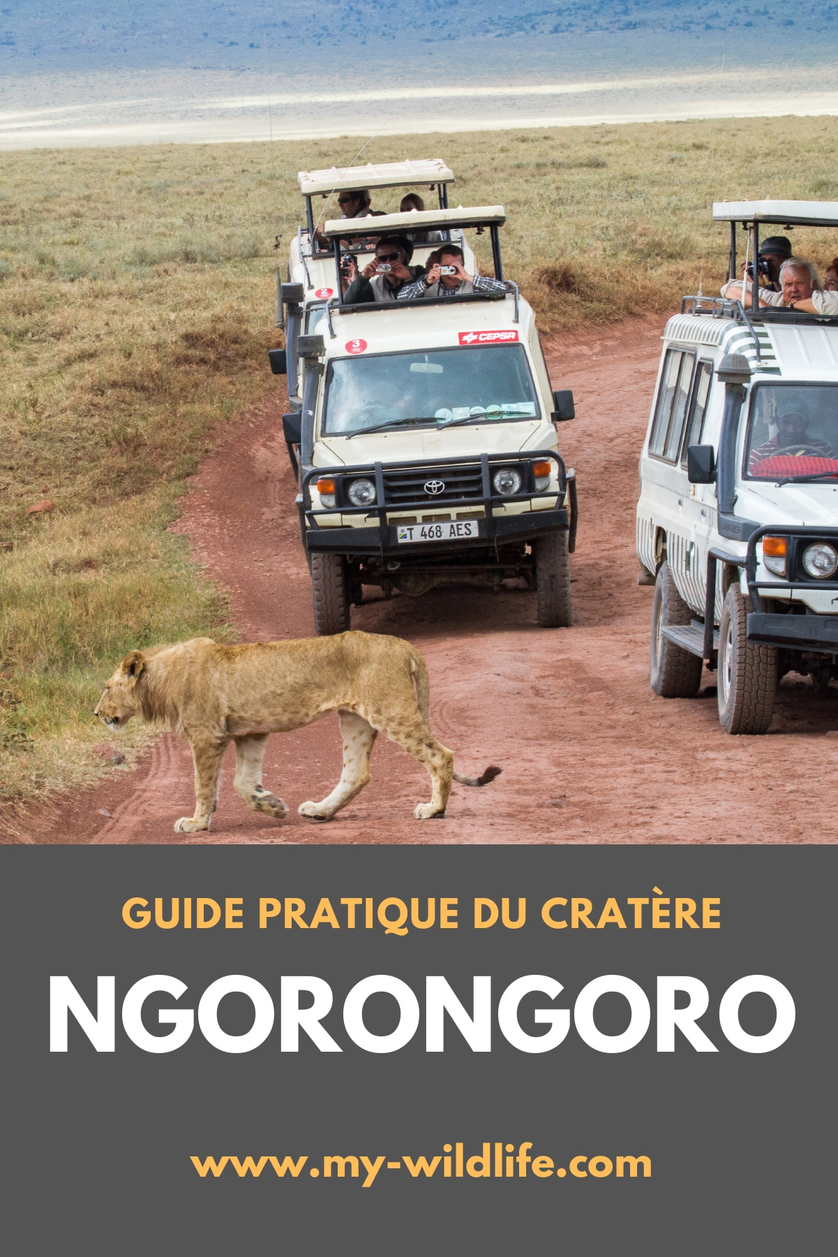 Ngorongoro-02
