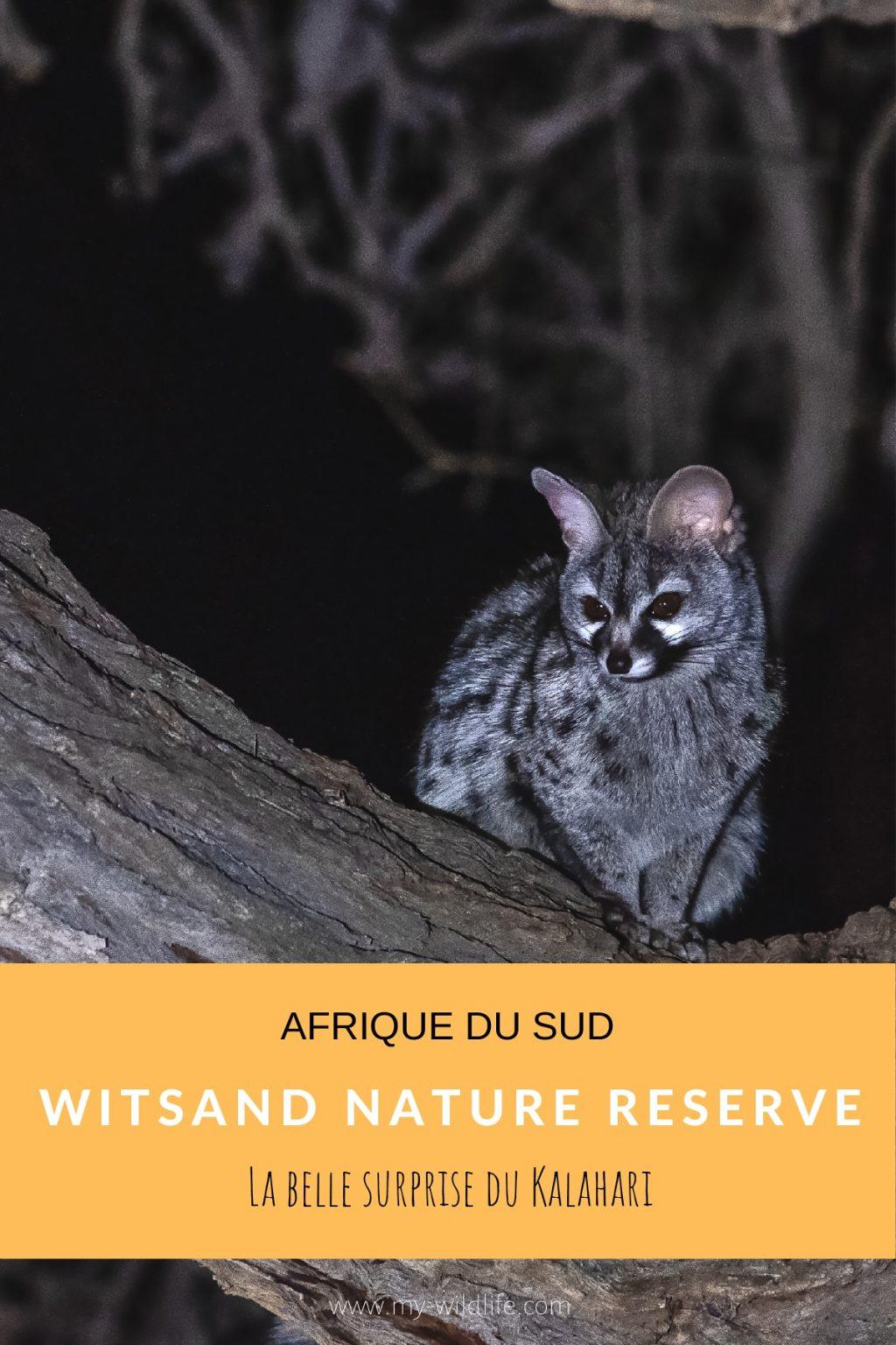 Witsand Nature reserve, Afrique du Sud