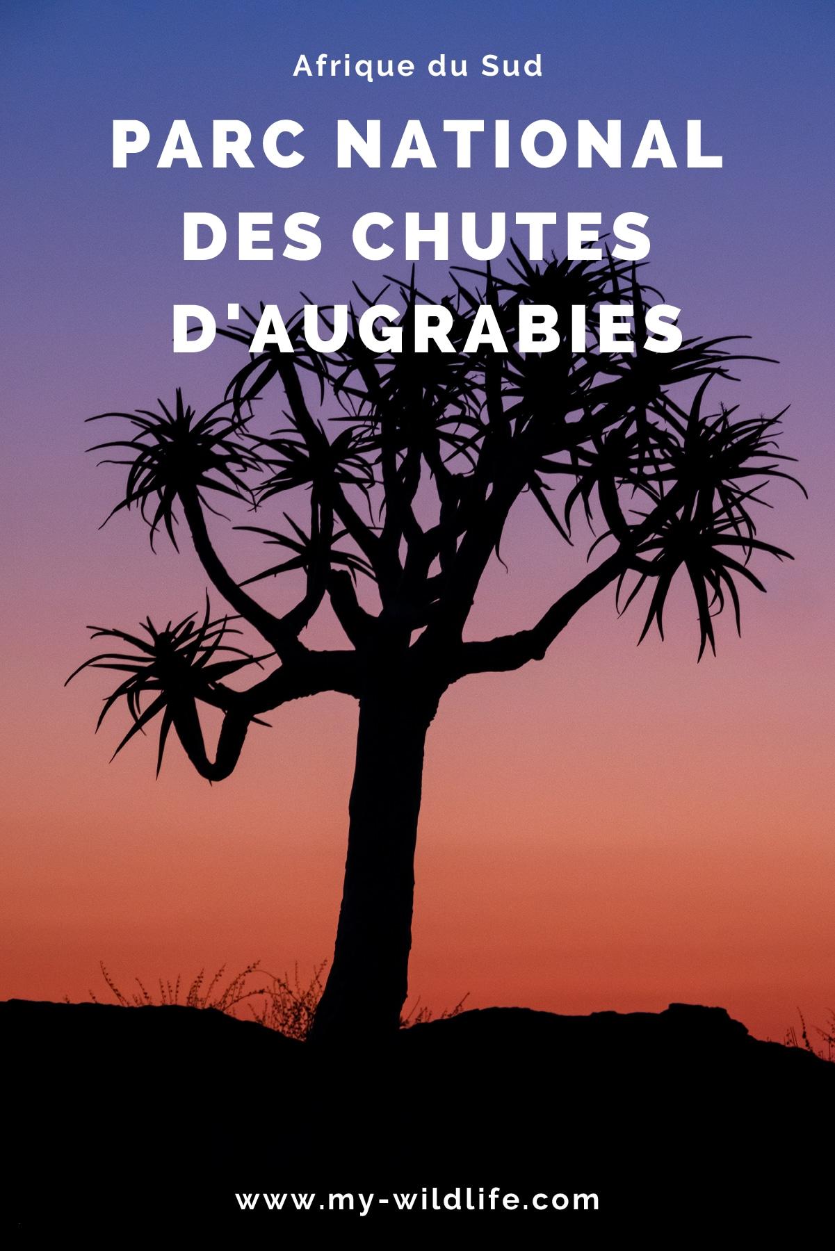 augrabie-04