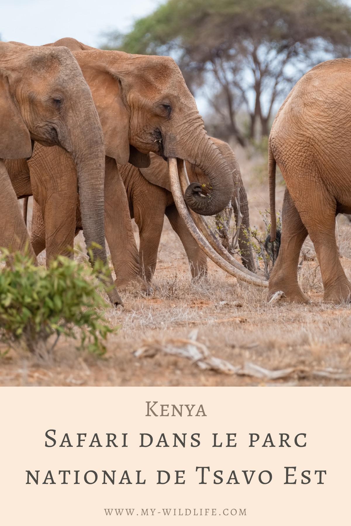 Safari-dans-le-parc-national-de-Tsavo-Est-01