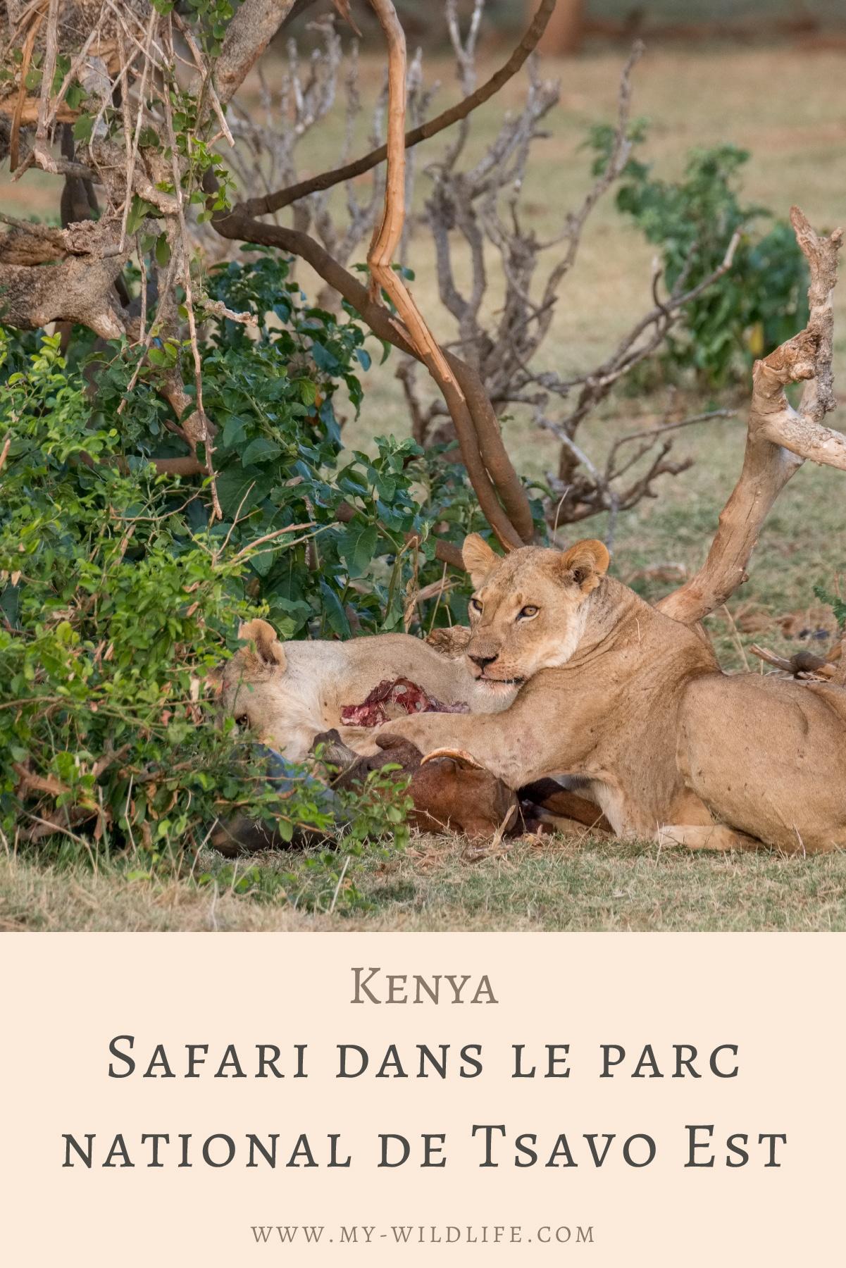Safari-dans-le-parc-national-de-Tsavo-Est-03