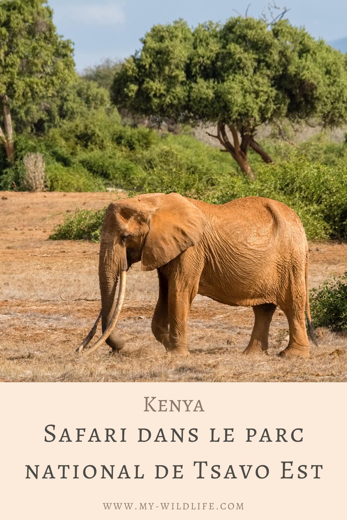 Safari-dans-le-parc-national-de-Tsavo-Est-04