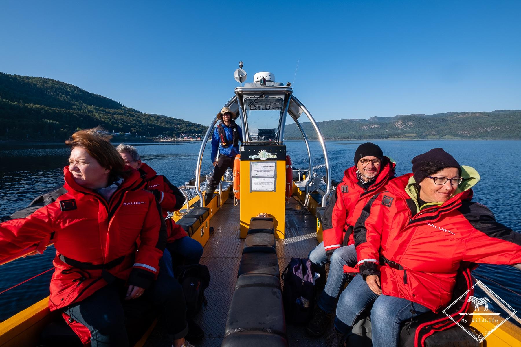 croisière baleines au Québec