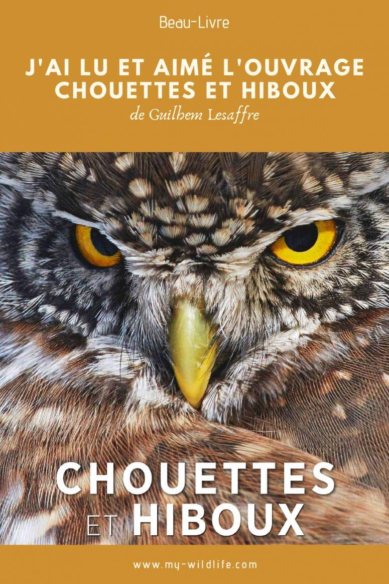 Chouettes et Hiboux