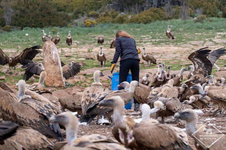 R2serve national de chasse de Boumort