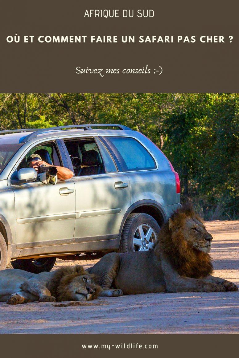 Safari économique en Afrique du Sud