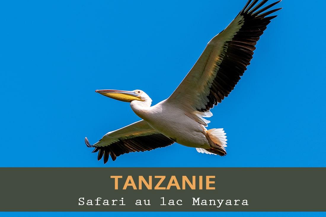Safari au lac Manyara