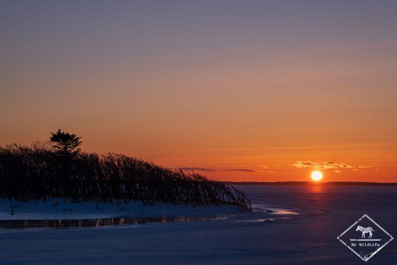 Coucher de soleil, péninsule de Nokutse