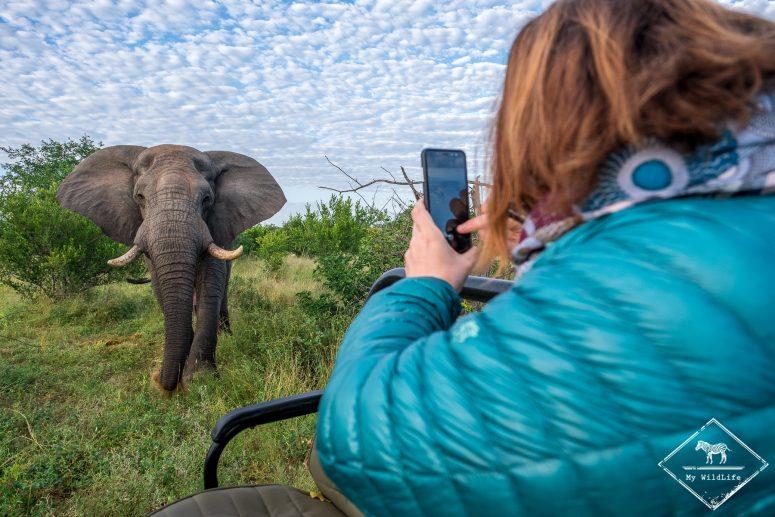 Safari Klaserie Private Nature Reserve