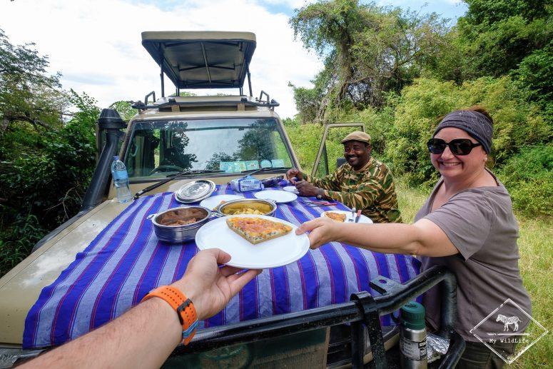 Pique-nique au Serengeti